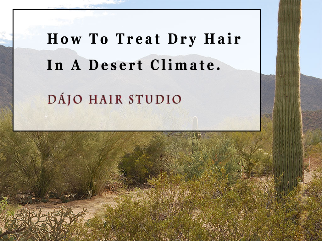 How to Treat Dry Hair in A Desert Climate
